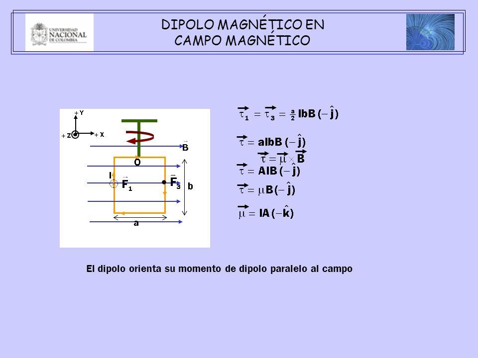 DIPOLO MAGNÉTICO EN CAMPO MAGNÉTICO El dipolo orienta su momento de dipolo paralelo al campo