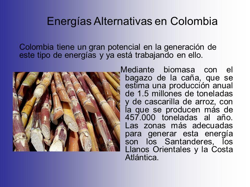 Mediante biomasa con el bagazo de la caña, que se estima una producción anual de 1.5 millones de toneladas y de cascarilla de arroz, con la que se pro