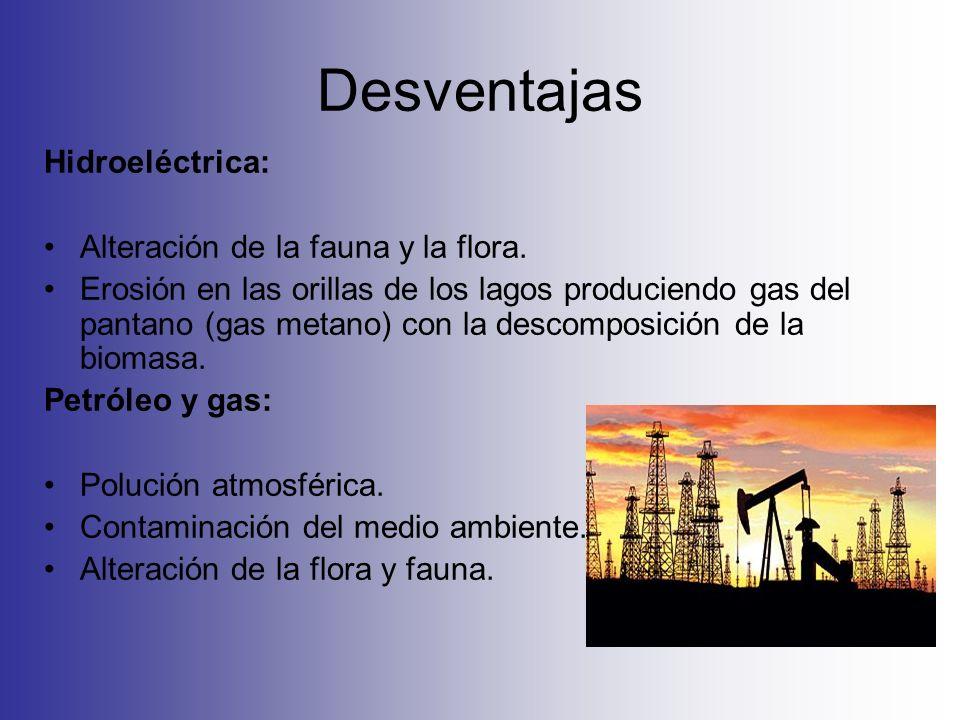 Desventajas Hidroeléctrica: Alteración de la fauna y la flora. Erosión en las orillas de los lagos produciendo gas del pantano (gas metano) con la des