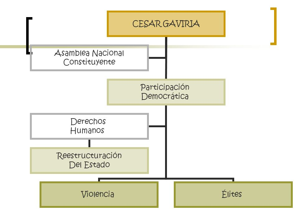 CESAR GAVIRIA Participación Democrática ViolenciaÉlites Derechos Humanos Reestructuración Del Estado Asamblea Nacional Constituyente