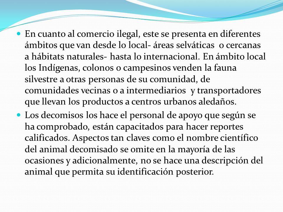 En cuanto al comercio ilegal, este se presenta en diferentes ámbitos que van desde lo local- áreas selváticas o cercanas a hábitats naturales- hasta lo internacional.