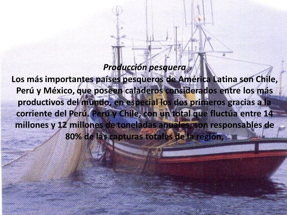 Producción pesquera Los más importantes países pesqueros de América Latina son Chile, Perú y México, que poseen caladeros considerados entre los más p