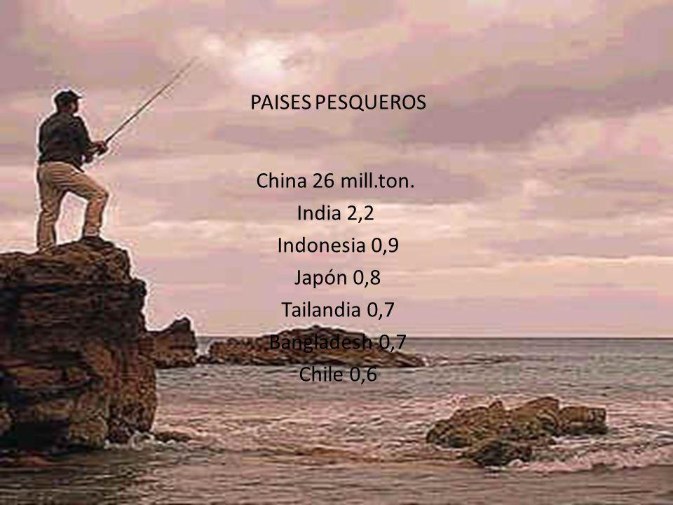 PAISES PESQUEROS China 26 mill.ton. India 2,2 Indonesia 0,9 Japón 0,8 Tailandia 0,7 Bangladesh 0,7 Chile 0,6