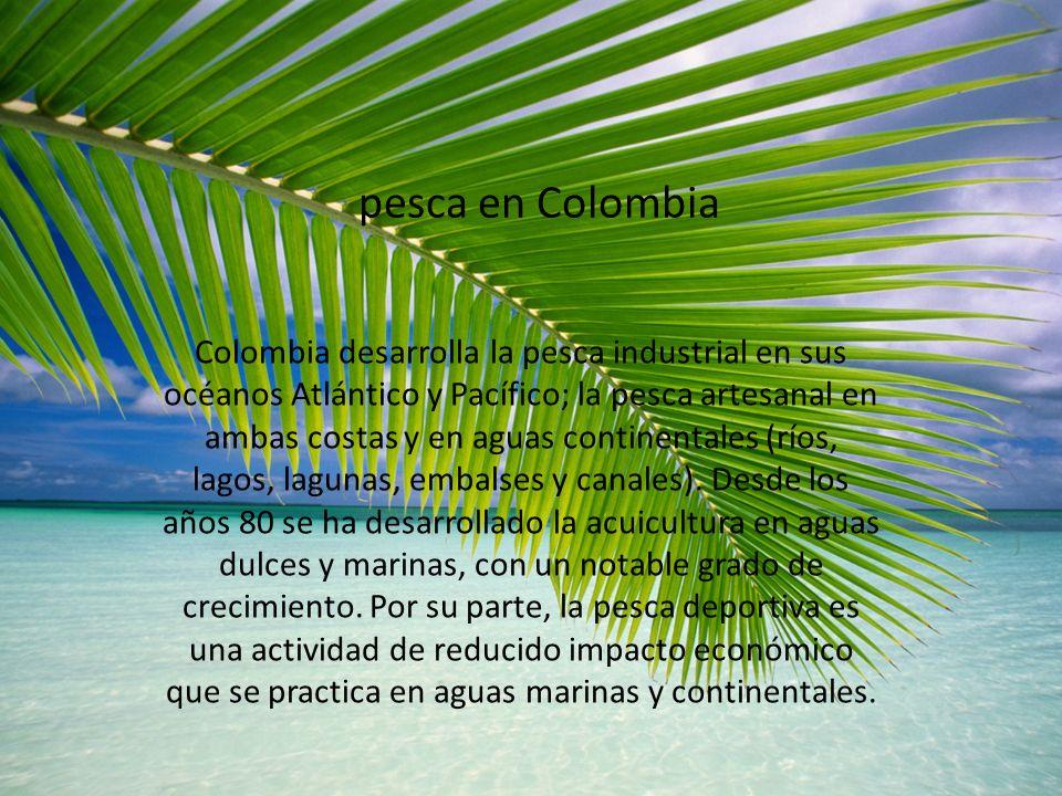 pesca en Colombia Colombia desarrolla la pesca industrial en sus océanos Atlántico y Pacífico; la pesca artesanal en ambas costas y en aguas continent