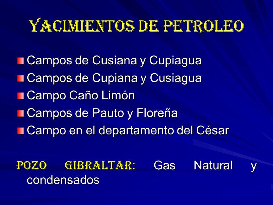 YACIMIENTOS DE PETROLEO Campos de Cusiana y Cupiagua Campos de Cupiana y Cusiagua Campo Caño Limón Campos de Pauto y Floreña Campo en el departamento del César POZO GIBRALTAR : Gas Natural y condensados