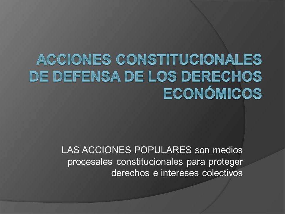 LAS ACCIONES POPULARES son medios procesales constitucionales para proteger derechos e intereses colectivos