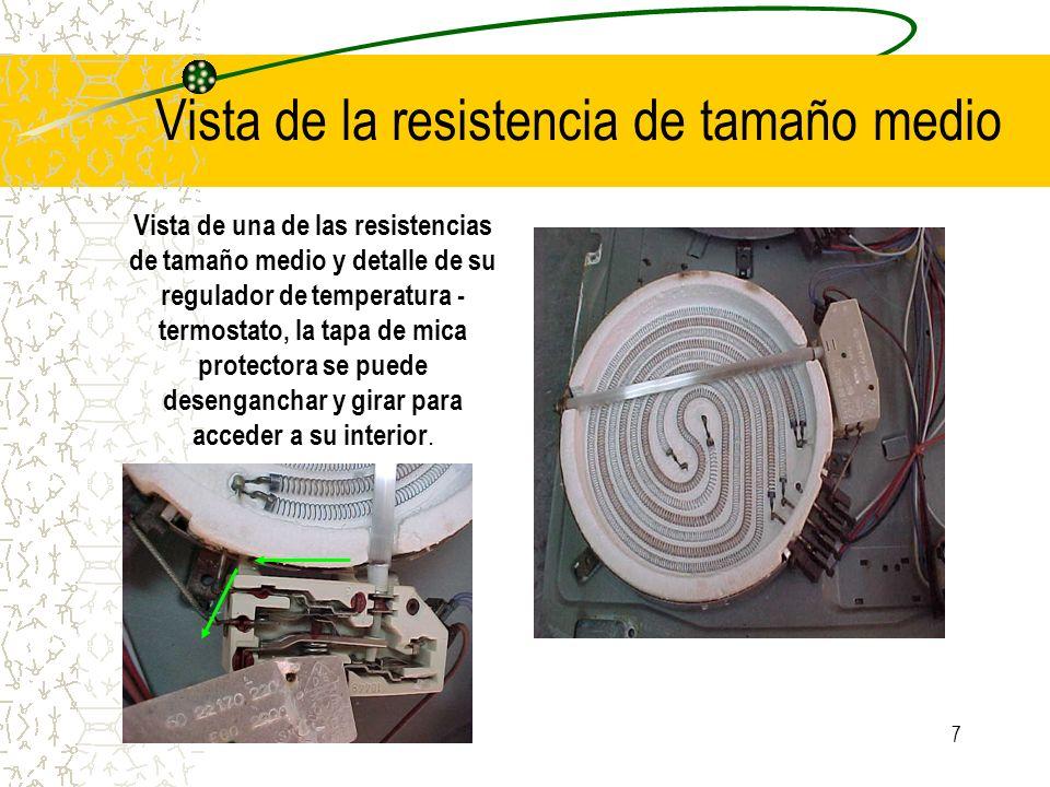 7 Vista de la resistencia de tamaño medio Vista de una de las resistencias de tamaño medio y detalle de su regulador de temperatura - termostato, la t