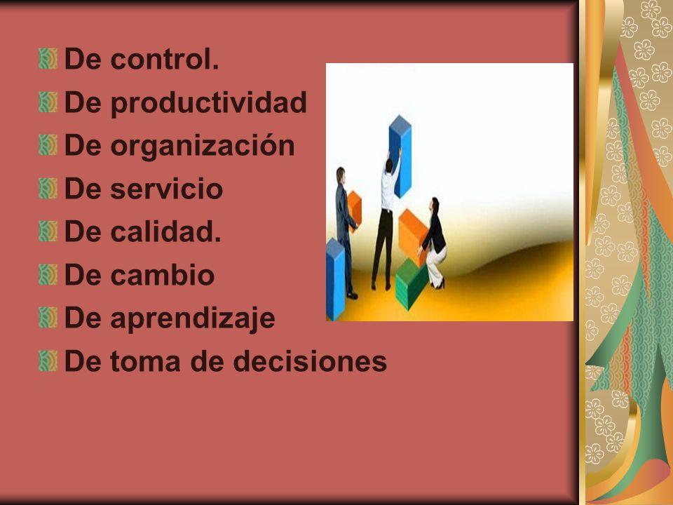 De control. De productividad De organización De servicio De calidad. De cambio De aprendizaje De toma de decisiones