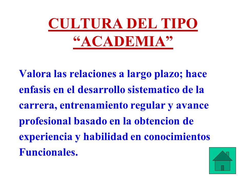 CULTURA DEL TIPO ACADEMIA Valora las relaciones a largo plazo; hace enfasis en el desarrollo sistematico de la carrera, entrenamiento regular y avance