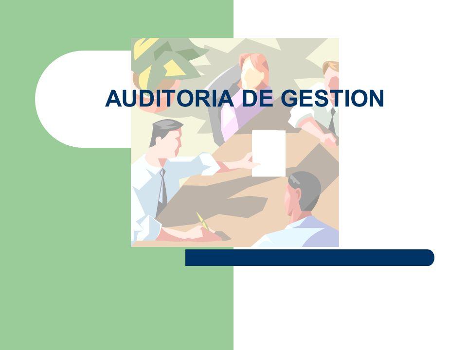 Enfoques de la AG Eficiencia y Economía Una auditoria que comprenda la eficiencia y economía de los programas o actividades tiene como objetivos: – Determinar si la entidad, programa o actividad adquiere, protege y utiliza los recursos de manera eficiente y económica.