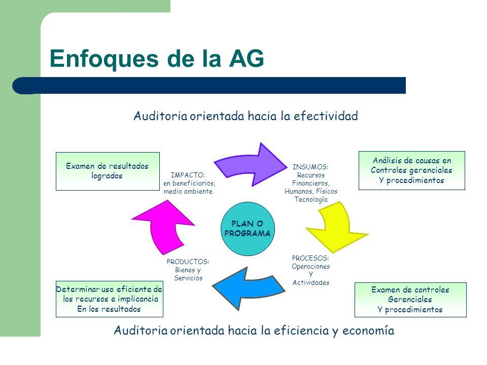 Enfoques de la AG Efectividad Objetivos Determinar el grado en que se están logrando los resultados o beneficios previstos por la normativa legal aplicable o, por la entidad que haya aprobado el programa o actividad.