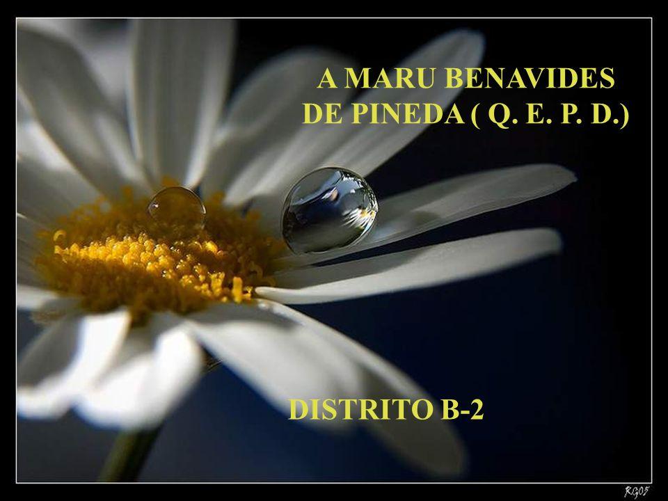 A MARU BENAVIDES DE PINEDA ( Q. E. P. D.) DISTRITO B-2