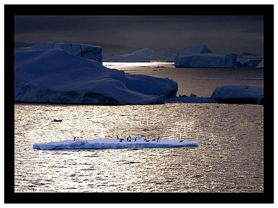 Alrededor del 99% de su territorio está cubierto de hielo y el promedio de su espesor es de 2.500 metros, alcanzando hasta los 4.776 en algunos sitios