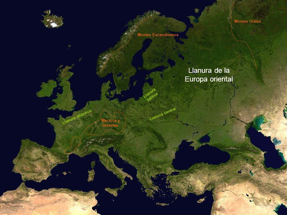 Llanura de la Europa oriental Montes Escandinavos Montes Urales Macizos y mesetas Llanura atlántica Llanura central Llanura báltica