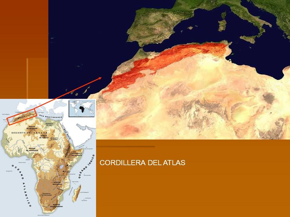 I. Canarias I. Cabo Verde OCEÁNO ATLÁNTICO