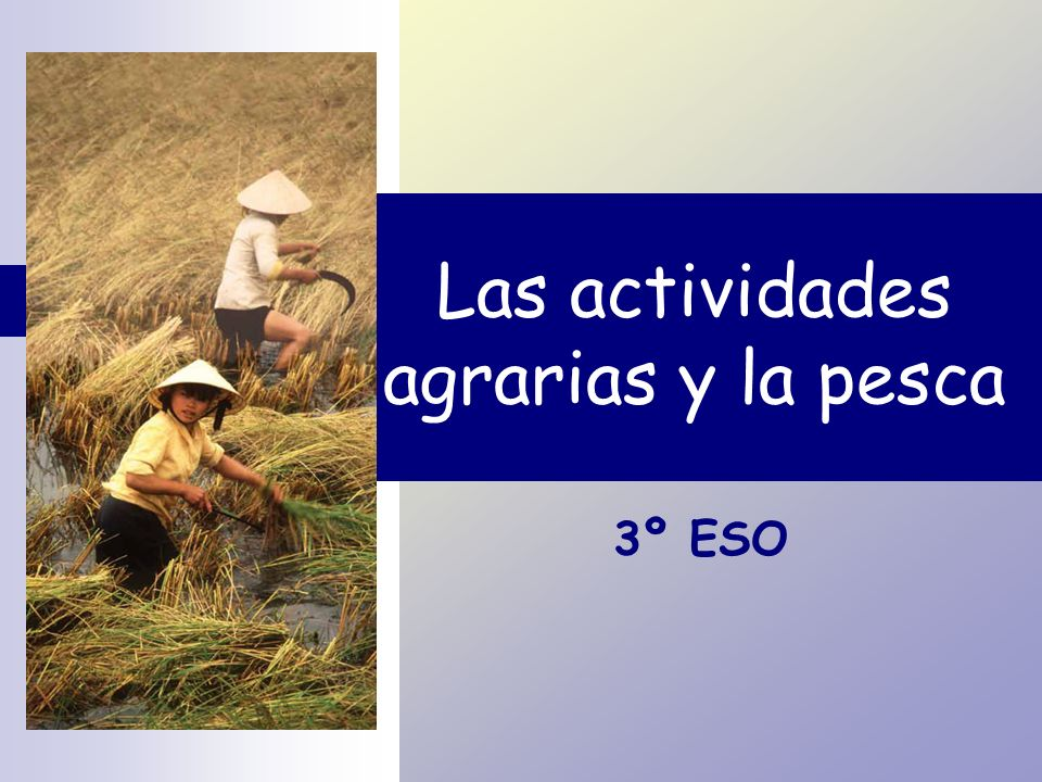 Las actividades agrarias y la pesca 3º ESO