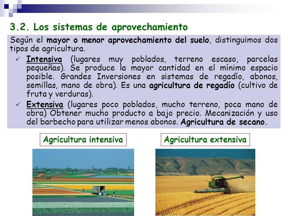 Según el mayor o menor aprovechamiento del suelo, distinguimos dos tipos de agricultura. Intensiva (lugares muy poblados, terreno escaso, parcelas peq
