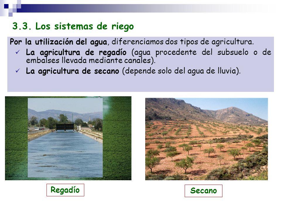 Por la utilización del agua, diferenciamos dos tipos de agricultura. La agricultura de regadío (agua procedente del subsuelo o de embalses llevada med