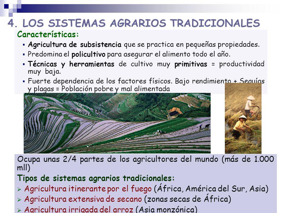 Características: Agricultura de subsistencia que se practica en pequeñas propiedades. Predomina el policultivo para asegurar el alimento todo el año.