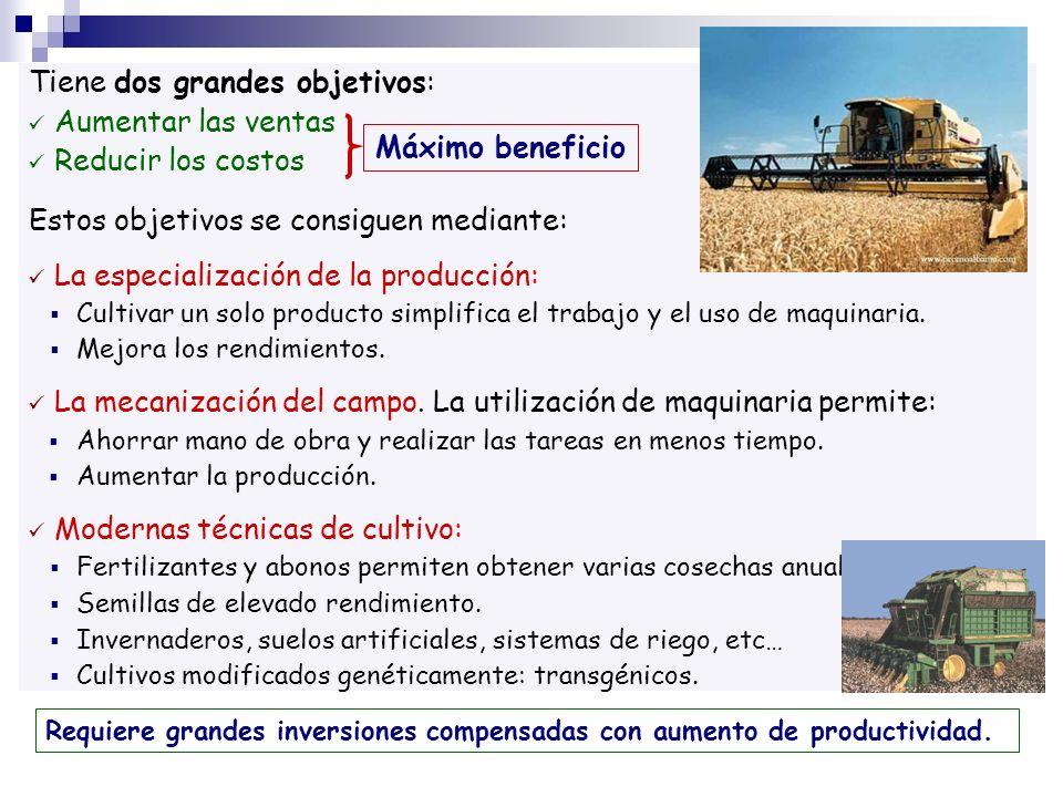 Tiene dos grandes objetivos: Aumentar las ventas Reducir los costos Estos objetivos se consiguen mediante: La especialización de la producción: Cultiv