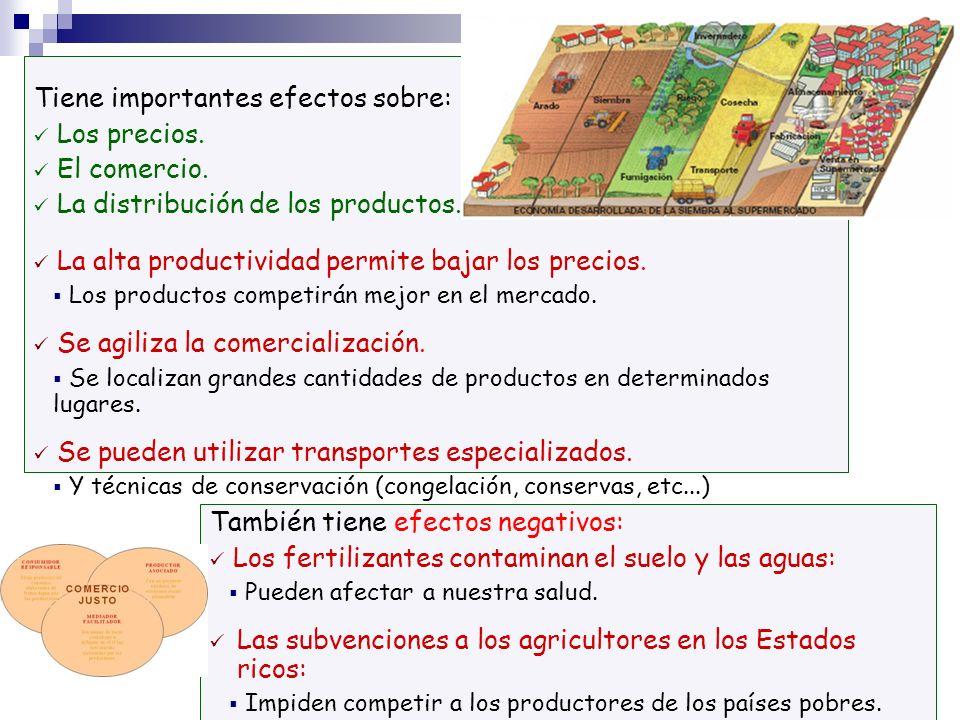 Tiene importantes efectos sobre: Los precios. El comercio. La distribución de los productos. La alta productividad permite bajar los precios. Los prod