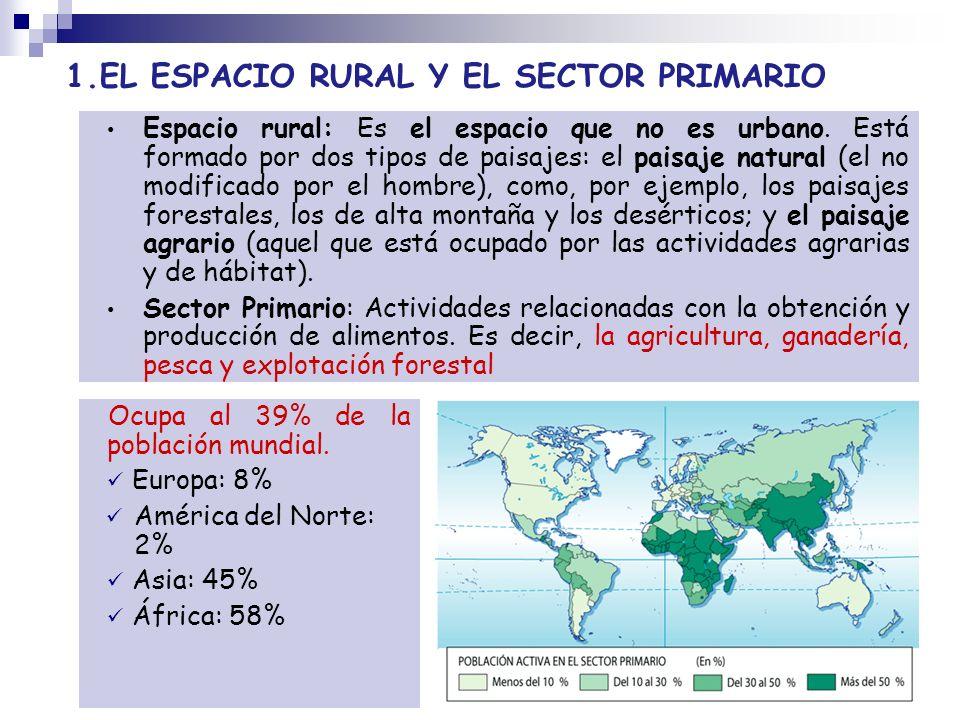 1.EL ESPACIO RURAL Y EL SECTOR PRIMARIO Ocupa al 39% de la población mundial. Europa: 8% América del Norte: 2% Asia: 45% África: 58% Espacio rural: Es
