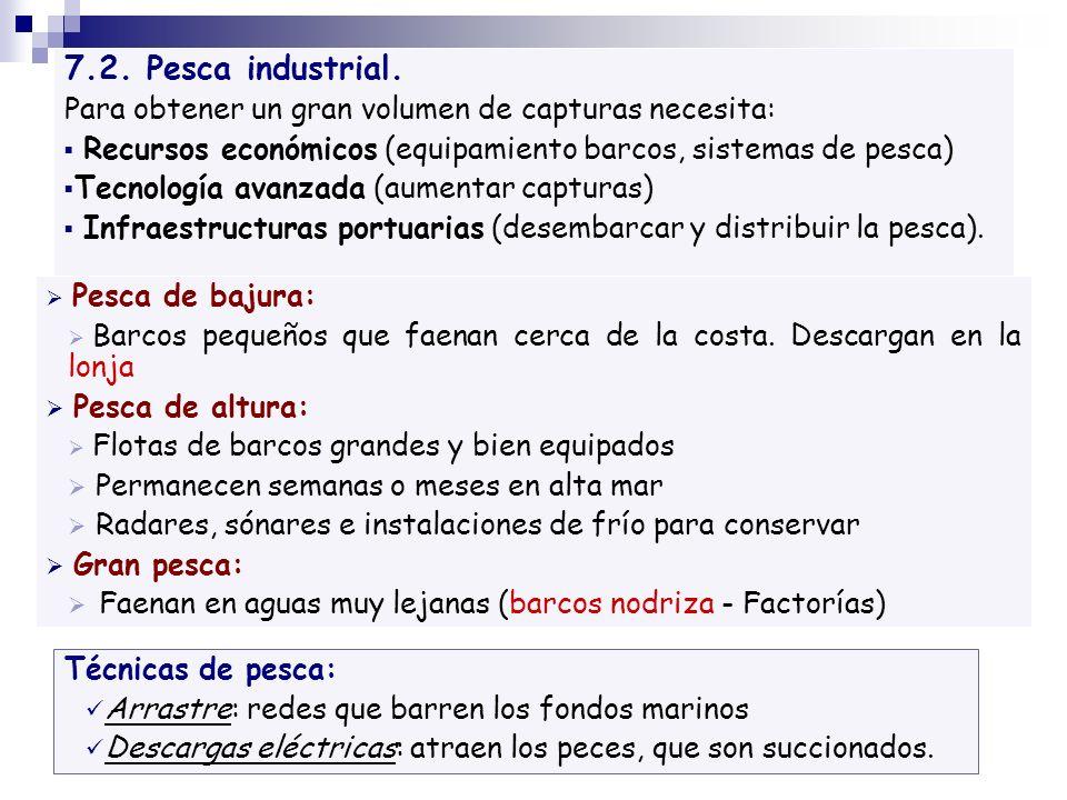 7.2. Pesca industrial. Para obtener un gran volumen de capturas necesita: Recursos económicos (equipamiento barcos, sistemas de pesca) Tecnología avan