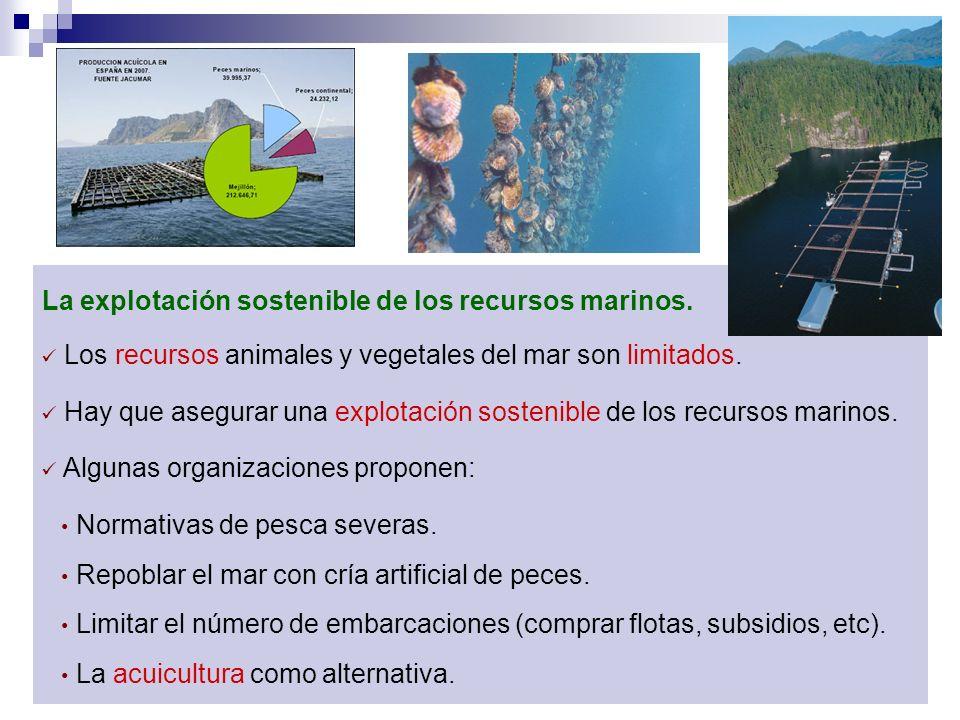 La explotación sostenible de los recursos marinos. Los recursos animales y vegetales del mar son limitados. Hay que asegurar una explotación sostenibl