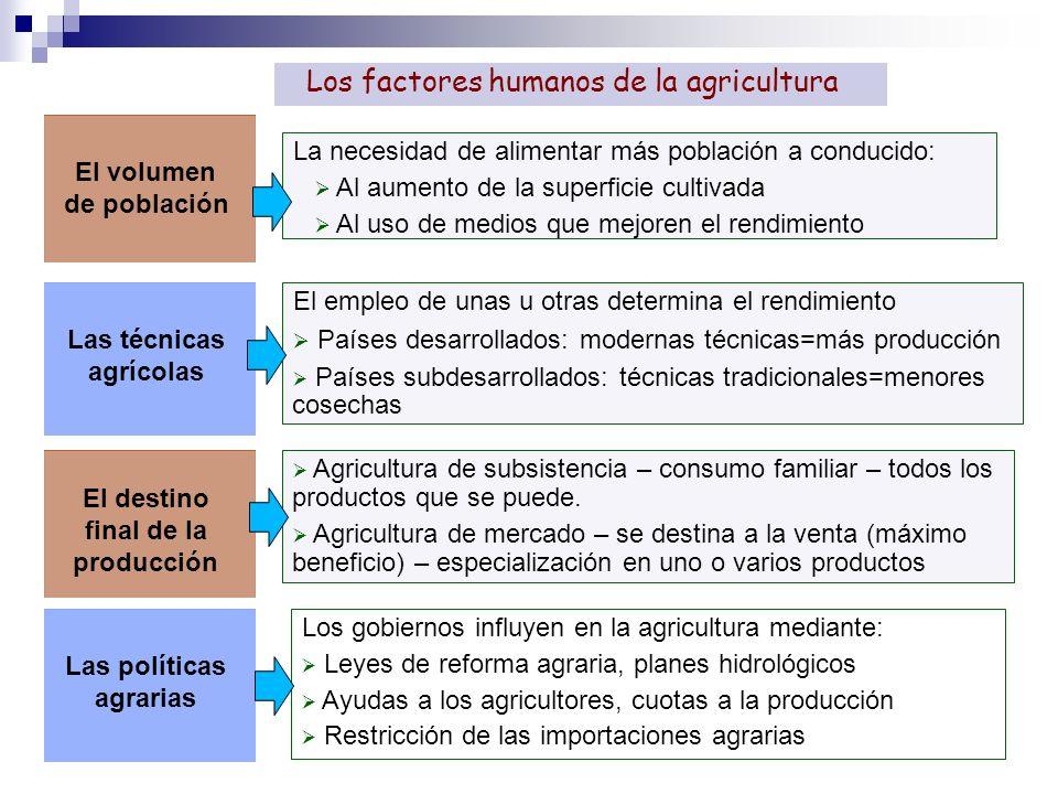 El empleo de unas u otras determina el rendimiento Países desarrollados: modernas técnicas=más producción Países subdesarrollados: técnicas tradiciona