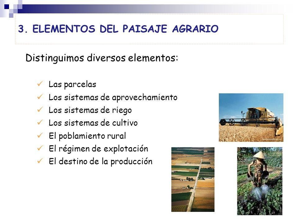 3. ELEMENTOS DEL PAISAJE AGRARIO Distinguimos diversos elementos: Las parcelas Los sistemas de aprovechamiento Los sistemas de riego Los sistemas de c