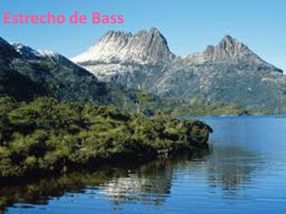 26/04/12 Estrecho de Bass