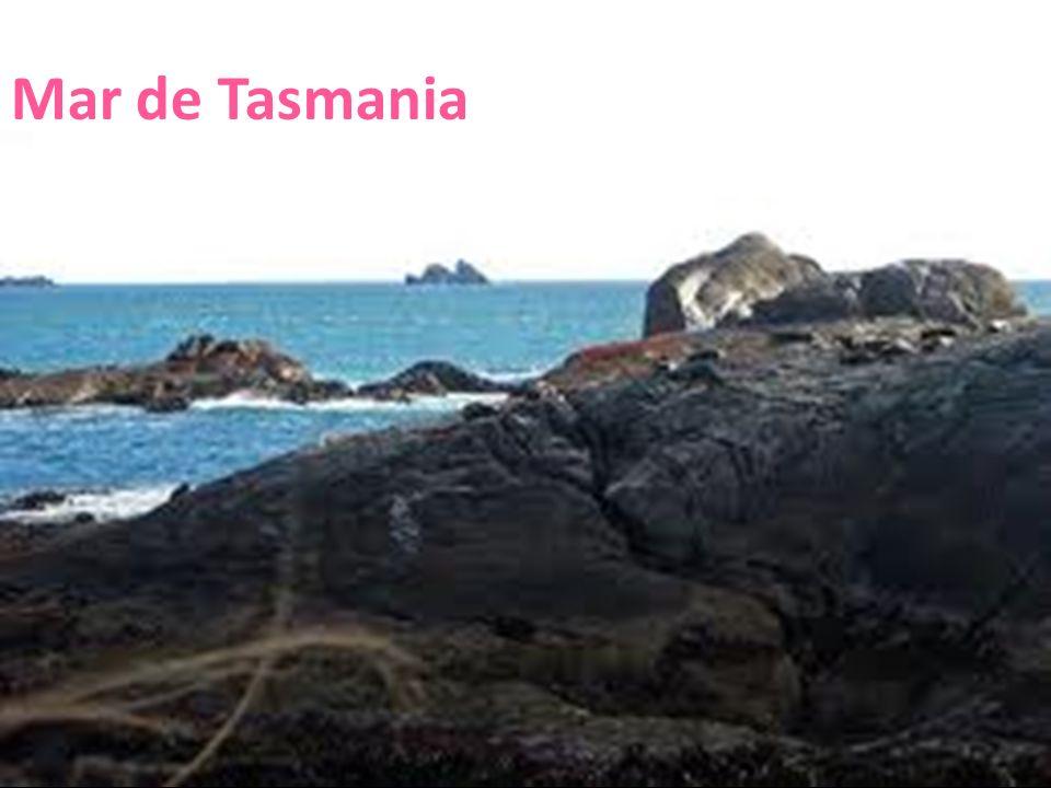 26/04/12 Mar de Tasmania