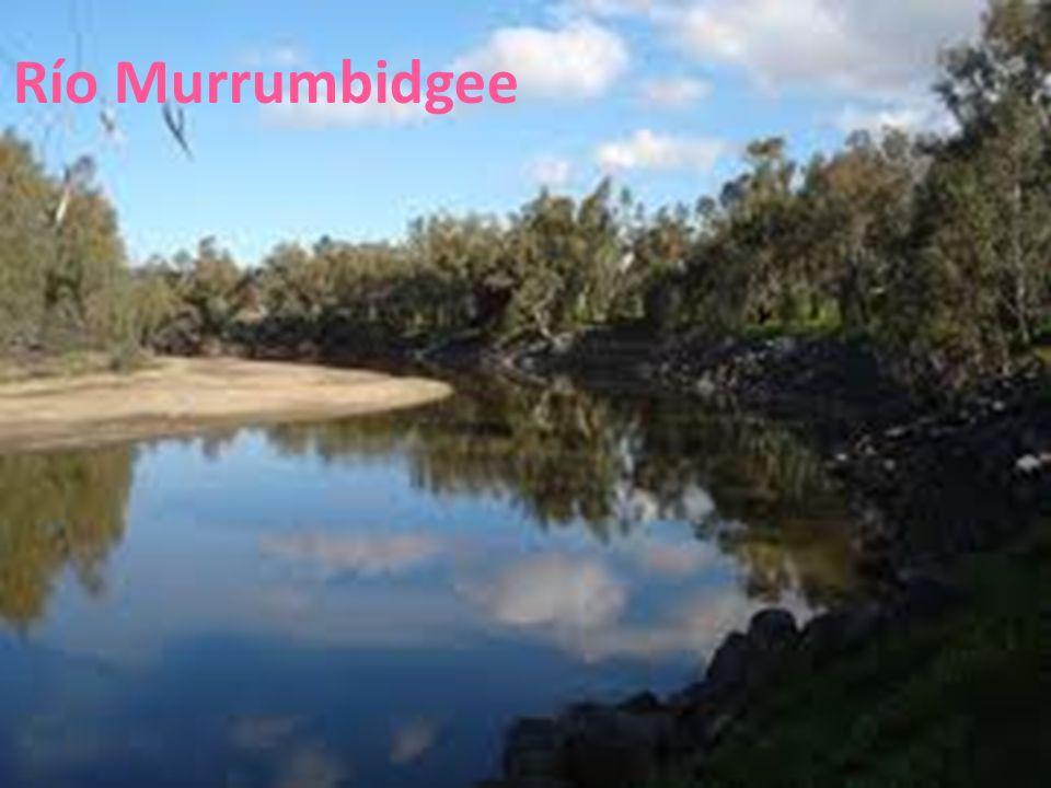 26/04/12 Río Murrumbidgee