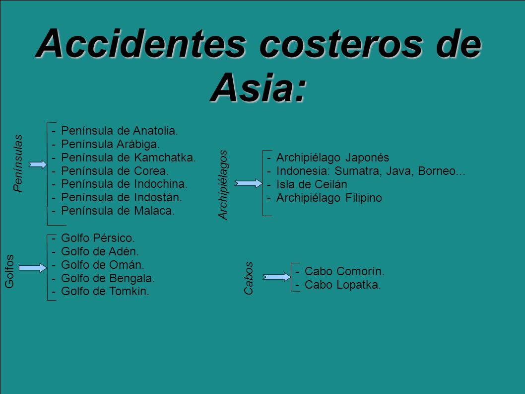 Accidentes costeros de Asia: -Península de Anatolia. -Península Arábiga. -Península de Kamchatka. -Península de Corea. -Península de Indochina. -Penín