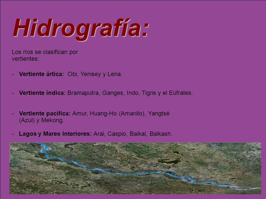 Hidrografía: -Lagos y Mares Interiores: Aral, Caspio, Baikal, Balkash. Los ríos se clasifican por vertientes: -Vertiente ártica: Obi, Yenisey y Lena.