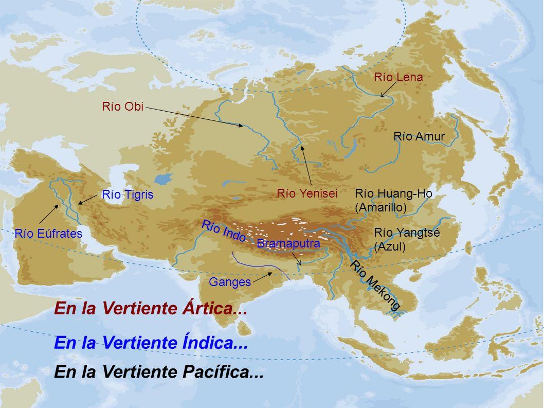 En la Vertiente Ártica... Río Obi Río Yenisei Río Lena En la Vertiente Índica... Ganges Río Indo Río Tigris Río Eúfrates En la Vertiente Pacífica... R