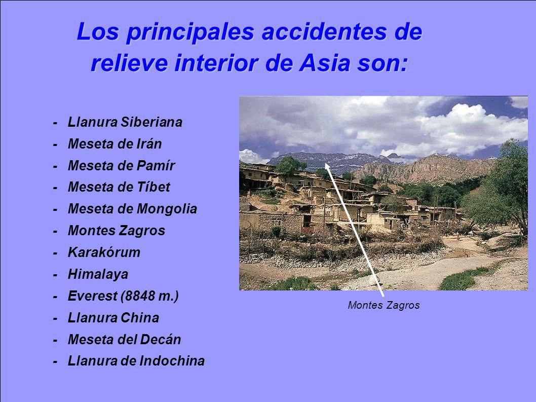 Los principales accidentes de relieve interior de Asia son: -Llanura Siberiana -Meseta de Irán -Meseta de Pamír -Meseta de Tíbet -Meseta de Mongolia -