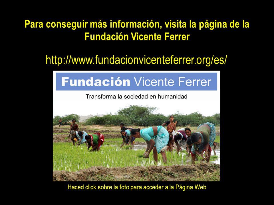 EL LEGADO DE VICENTE FERRER LA MUJER En 1982, la Fundación Vicente Ferrer (FVF) inició un programa de desarrollo de la mujer para conseguir revaloriza