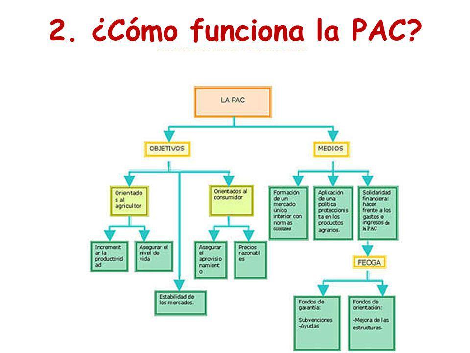 2. ¿Cómo funciona la PAC?