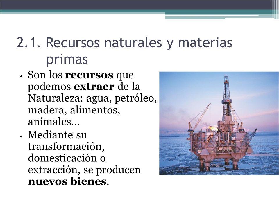2.1. Recursos naturales y materias primas Son los recursos que podemos extraer de la Naturaleza: agua, petróleo, madera, alimentos, animales… Mediante