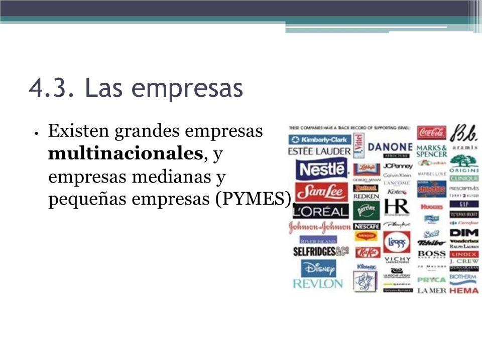 4.3. Las empresas Existen grandes empresas multinacionales, y empresas medianas y pequeñas empresas (PYMES).