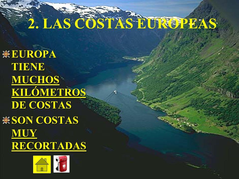 EL MONTBLANC EL MONT BLANC ES LA CUMBRE EMBLEMÁTICA DE LOS ALPES ALTURA: 4.810,9 m. ES EL MÁS ALTO DE LA EUROPA OCCIDENTAL