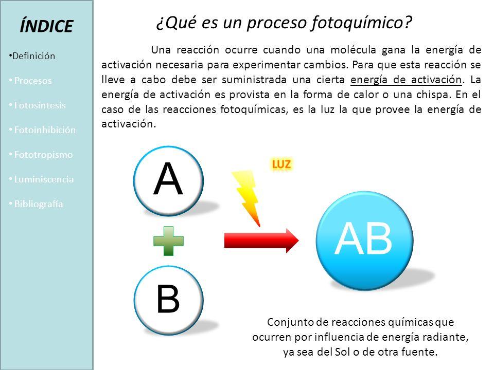 Conjunto de reacciones químicas que ocurren por influencia de energía radiante, ya sea del Sol o de otra fuente.