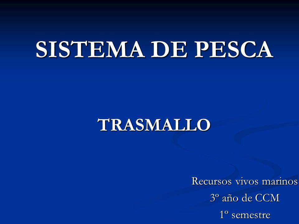 SISTEMA DE PESCA TRASMALLO Recursos vivos marinos 3º año de CCM 1º semestre