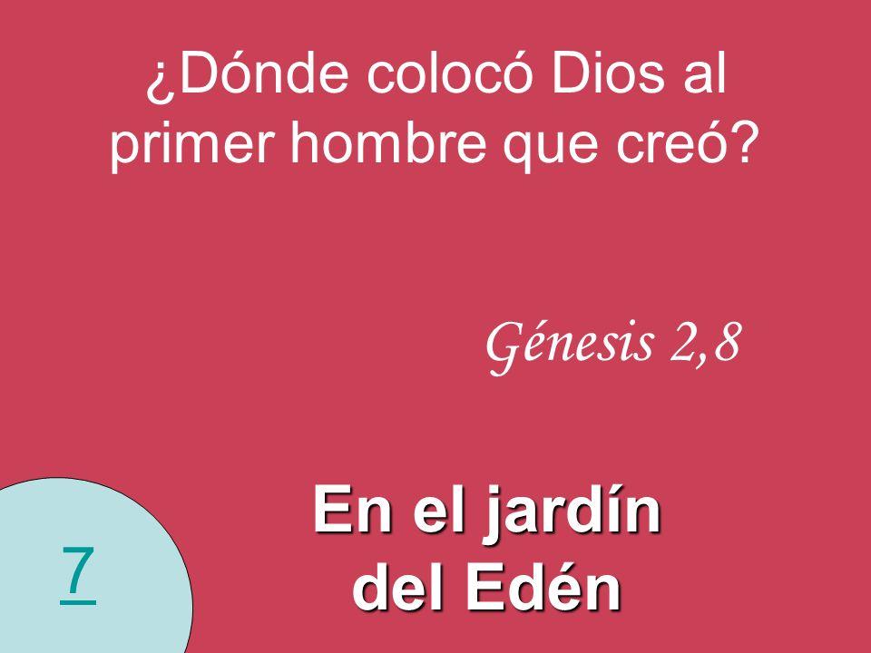 7 ¿Dónde colocó Dios al primer hombre que creó? Génesis 2,8 En el jardín del Edén