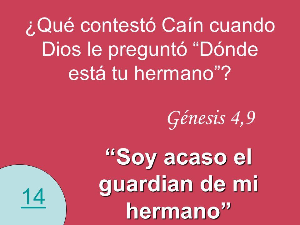 14 ¿Qué contestó Caín cuando Dios le preguntó Dónde está tu hermano? Génesis 4,9 Soy acaso el guardian de mi hermano