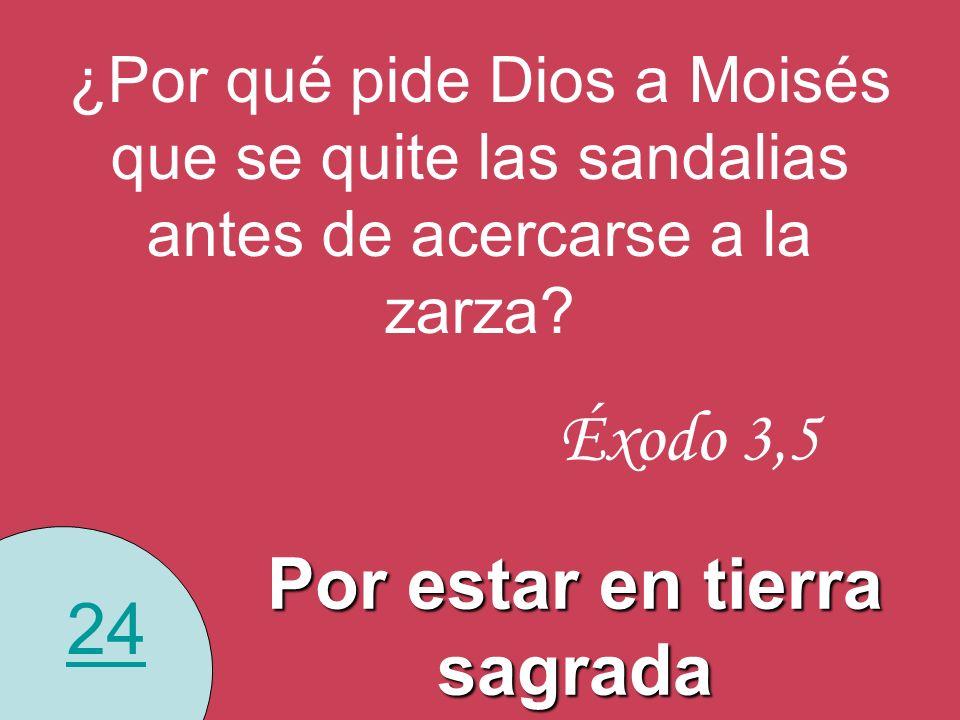 24 ¿Por qué pide Dios a Moisés que se quite las sandalias antes de acercarse a la zarza? Por estar en tierra sagrada Éxodo 3,5