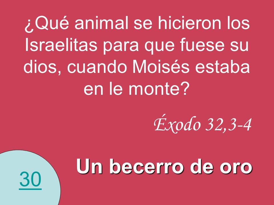 30 ¿Qué animal se hicieron los Israelitas para que fuese su dios, cuando Moisés estaba en le monte? Un becerro de oro Éxodo 32,3-4