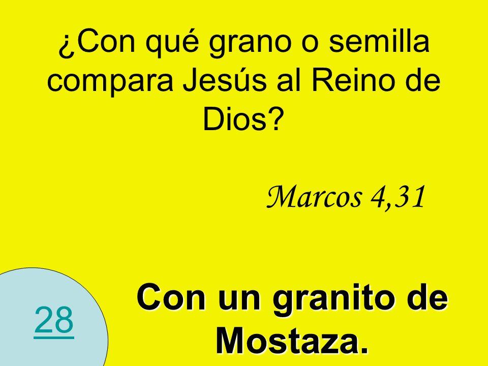 28 ¿Con qué grano o semilla compara Jesús al Reino de Dios? Con un granito de Mostaza. Marcos 4,31
