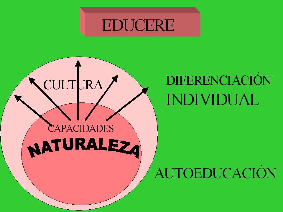 En esto consiste la educación negativa: no enseñar la virtud ni la verdad, sino en defender el corazón del vicio y el espíritu del error(…) Considerad